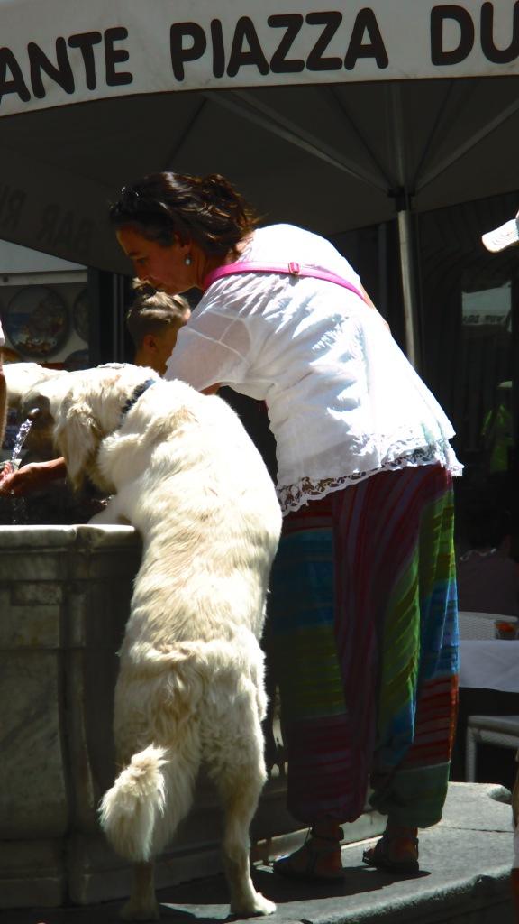 IPwoman and dog